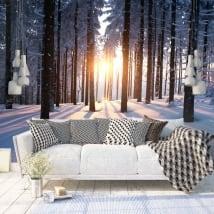 Murales tramonto alberi inverno