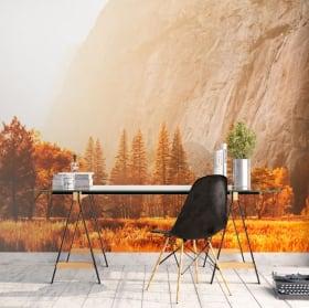 Murales Yosemite Sierra Nevada California