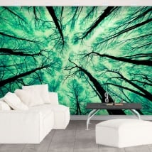 Murales alberi forestali