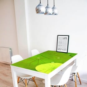 Vinile decorativo tavoli ninfee