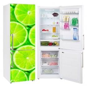 Vinili refrigeratori e frigoriferi calce