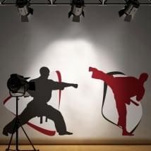 Vinile adesivo pareti di karate-do