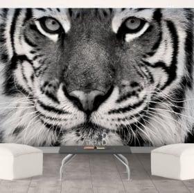 Murale in vinile tigre