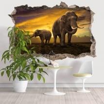 Vinili buco muro elefanti 3d