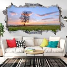 Vinili buco muro tramonto nel campo 3d