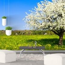 Murales in vinile albero di ciliegio