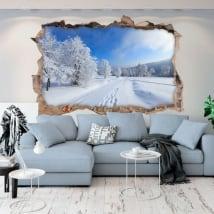 Vinili buco muro natura in inverno 3d