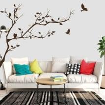 Vinili ramo di un albero e uccelli da decorare