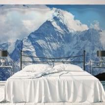 Murales in vinile montagne innevate nepal