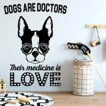 Vinili e adesivi frasi il buon dottore