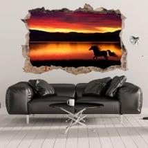 Vinili 3d cavallo e natura buco muro