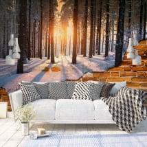 Gigantografie muro rotto tramonto alberi inverno