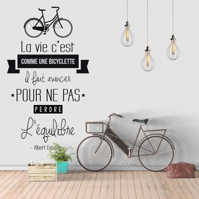 Vinile frase in francese la vita è come andare in bicicletta