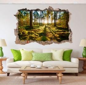 Adesivi decorativi 3d tramonto nella foresta