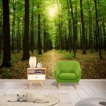 Murales alberi nella foresta