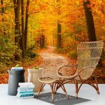 Murales in vinile alberi in autunno