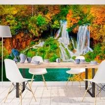Murales pareti cascata della foresta in autunno