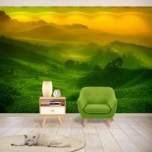 Murales in vinile piantagione di tè malese