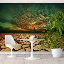 Murales in vinile terra di siccità