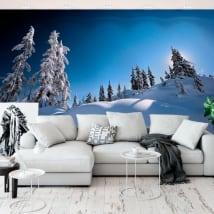 Murales in vinile pini nella neve