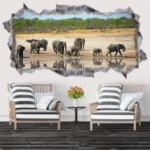 Vinile decorativo e adesivi elefanti 3d
