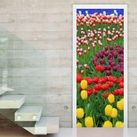 Vinili porte fiori tulipani colorati