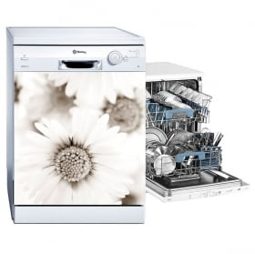 Vinile e adesivi lavastoviglie fiori margherite