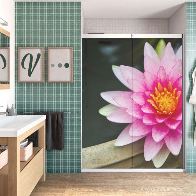 Vinile per schermi fiore di loto
