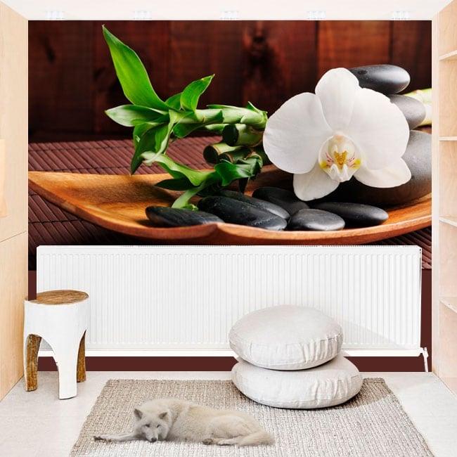 Murales in vinile con stile zen