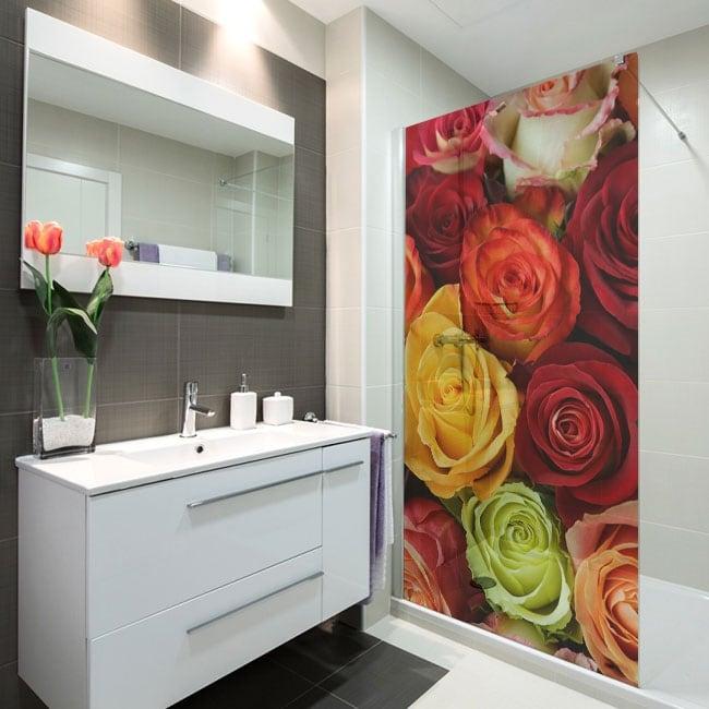 Vinile per schermi rose colorate