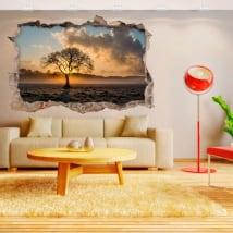 Adesivi in vinile 3d albero e tramonto