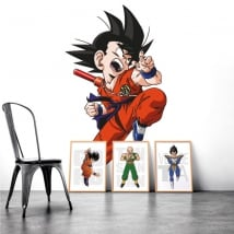 Vinile e adesivi dragon ball