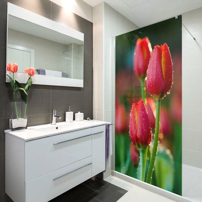 Vinile per schermi fiori di tulipani