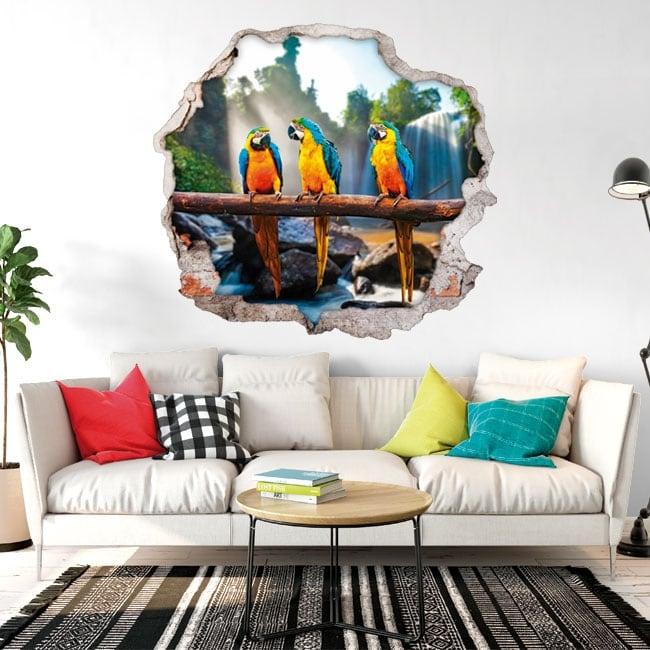 Vinile e adesivi 3d pappagalli o ara