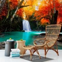 Murales in vinile cascata e alberi in autunno