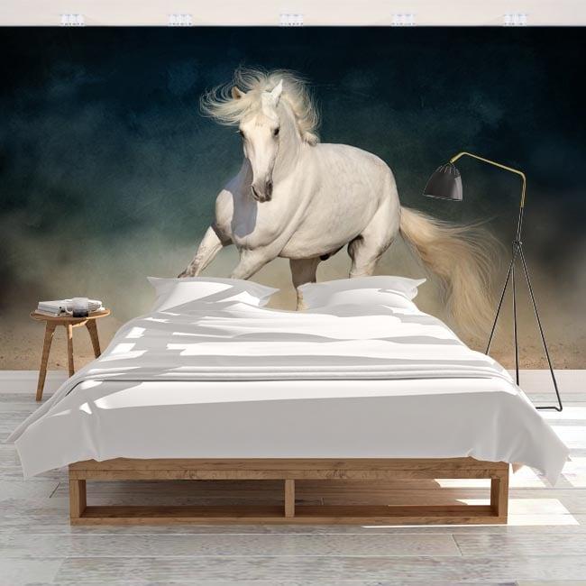 Murales adesivi cavallo bianco