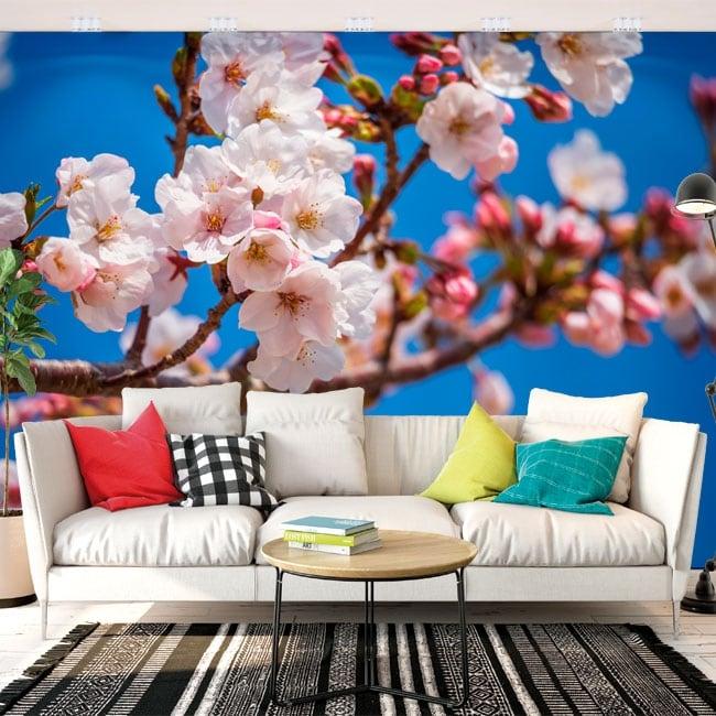 Adesivo murale fiore di ciliegio giapponese