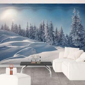 Murali in vinile tramonto in inverno