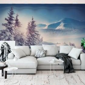 Murali in vinile inverno nelle montagne dei carpazi