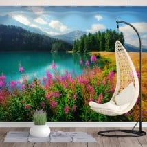 Murali in vinile lago champfèr