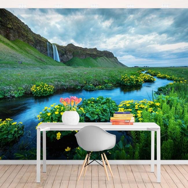 Fotomurali cascate di seljalandsfoss islanda