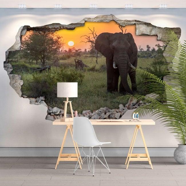 Vinili e adesivi 3d elefante tramonto in africa