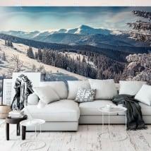 Murali in vinile paesaggio con montagne innevate