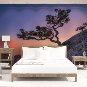 Murali in vinile albero e tramonto