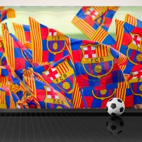 Murali in vinile stadio di calcio camp nou barcelona