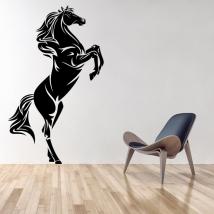 Vinili decorativi e adesivi cavallo